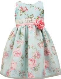 https://m.macys.com/shop/product/jayne-copeland-sleeveless-floral-print-dress-toddler-little-girls?ID=2573486&CategoryID=6581